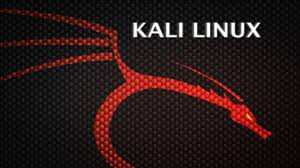 logo for Kali Linux