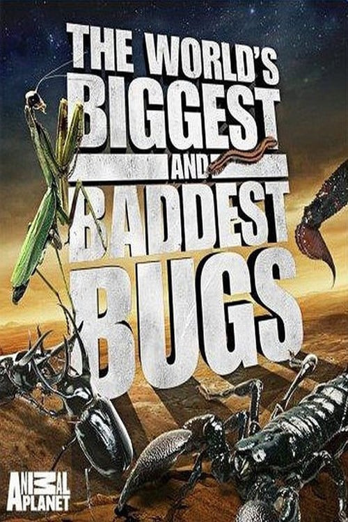 World's Biggest and Baddest Bugs 2009